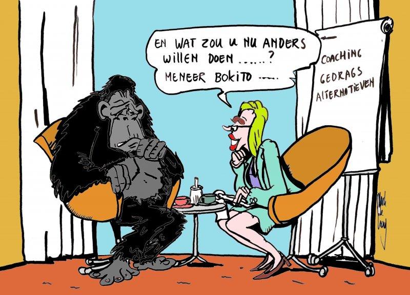 Cartoon gebruikt voor Houthoff coaching 2014